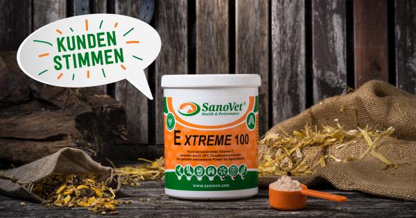 kundenstimmen_extreme100