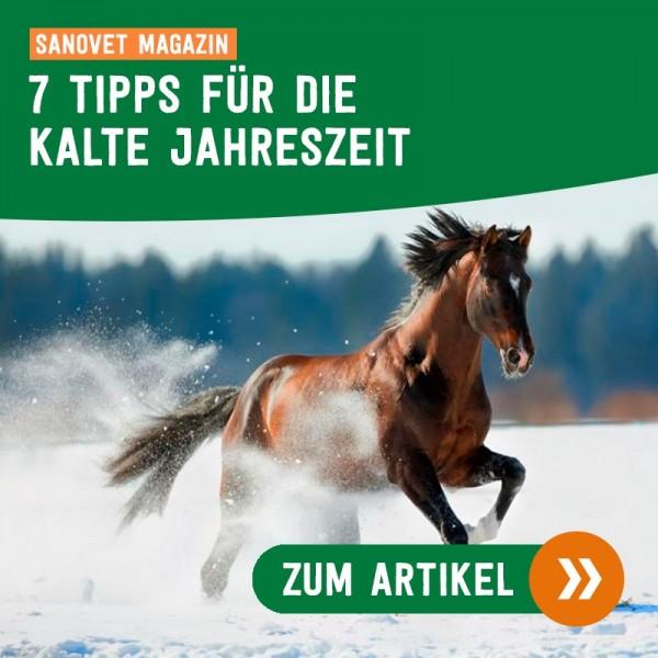 7-TIPPS-F-R-DIE-KALTE-JAHRESZEIT